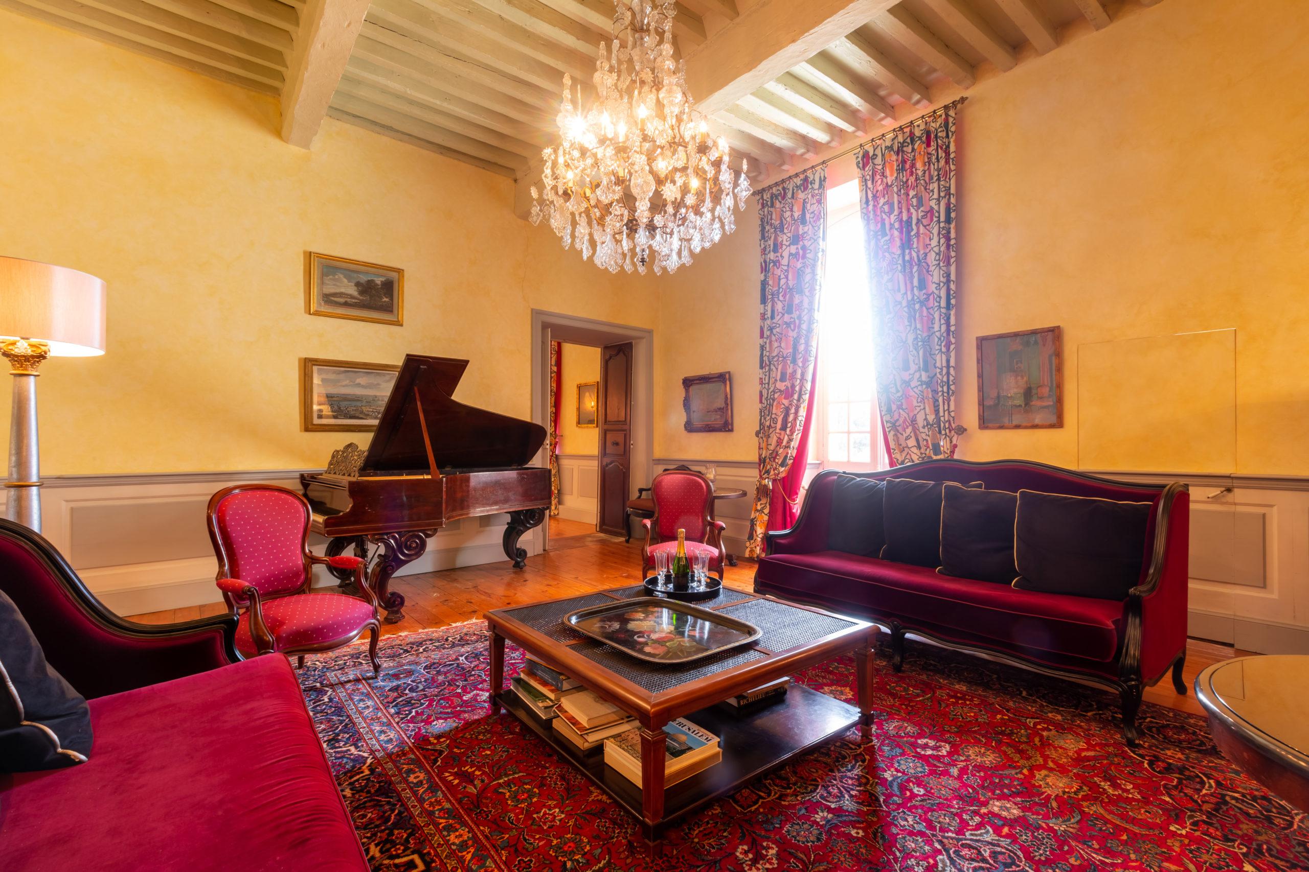 Salon château d'Issus